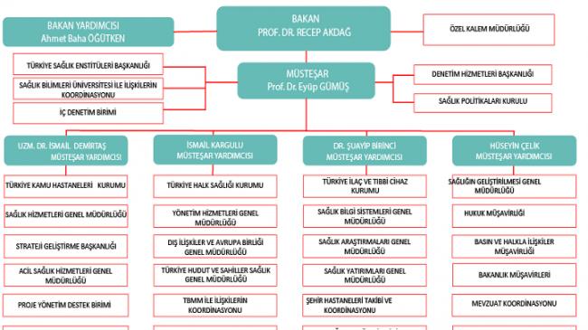 Sağlık Bakanlığı teşkilatı görev dağılımı